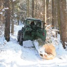 Holz rücken mit dem Traktor
