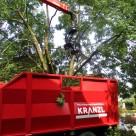 Abtragen eines Baumes