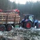 Holz für einen Dachstuhl